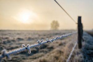 Winters Landschap van Richard Mijnten