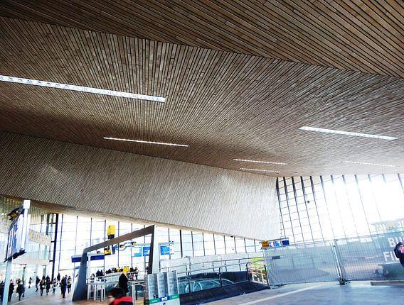 Rotterdam Centraal - Aankomsthal 4 van MoArt (Maurice Heuts)