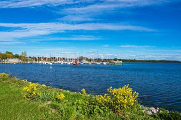 Blick auf den Hafen von Rerik am Salzhaff von Rico Ködder