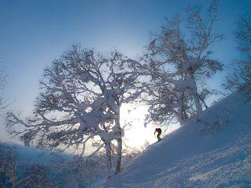 Skifahrer im Winterwunderland Niseko – Hokkaido, Japan von Menno Boermans