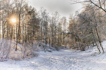 Winterweer in Nederland van Mark Bolijn