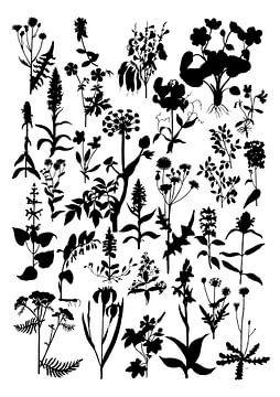 Collage van planten in zwartwit van Jasper de Ruiter