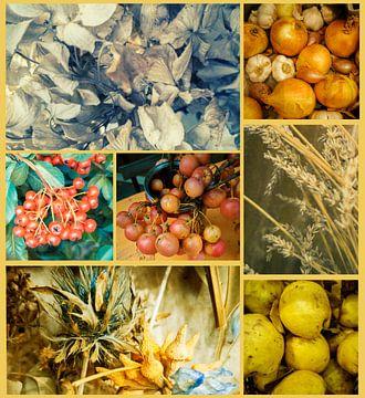 Herbstsaisonale Collage von Ariadna de Raadt