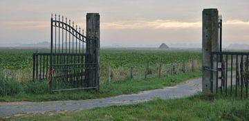 Texel Landschap 038 van Starworks Lien van der Star