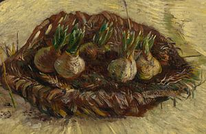 Vincent van Gogh, Mand met hyacintbollen van