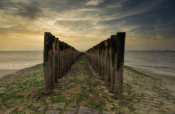 Strandpalen bij Nieuwvliet-Bad