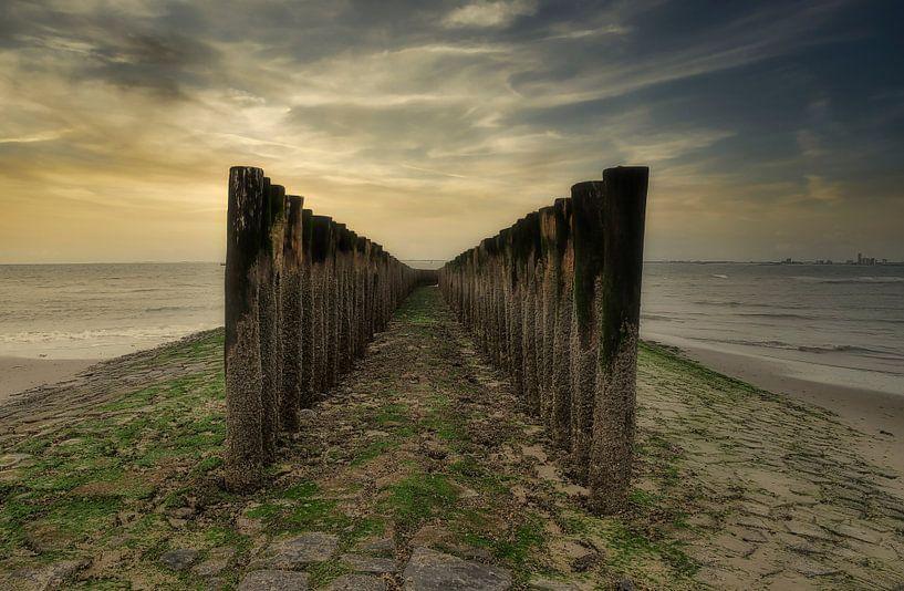Strandpalen bij Nieuwvliet-Bad van Ellen Driesse