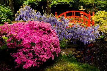 Japanse tuin van Ton van Buuren
