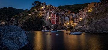Nacht in Riomaggiore, Italië van Nico  Calandra