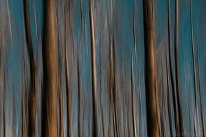 Abstract Nature van Saskia Jans
