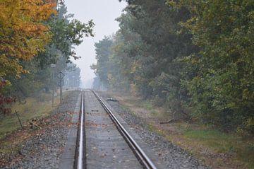 Treinrails verdwijnt aan de horizon. van Ronald H
