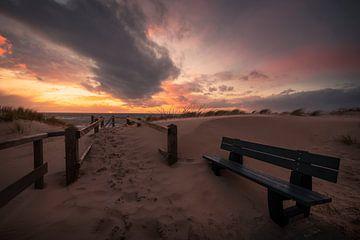 Sandblasted and Set Free von Thom Brouwer