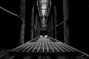 Industrial Symmetry