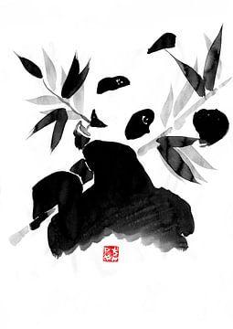 Panda von philippe imbert