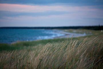 Ostsee - Sonnenuntergang am Strand von t.ART