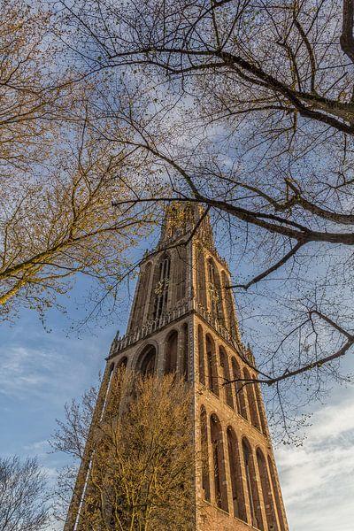 Domtoren Utrecht vanaf het Domplein op een zonnige dag - 3