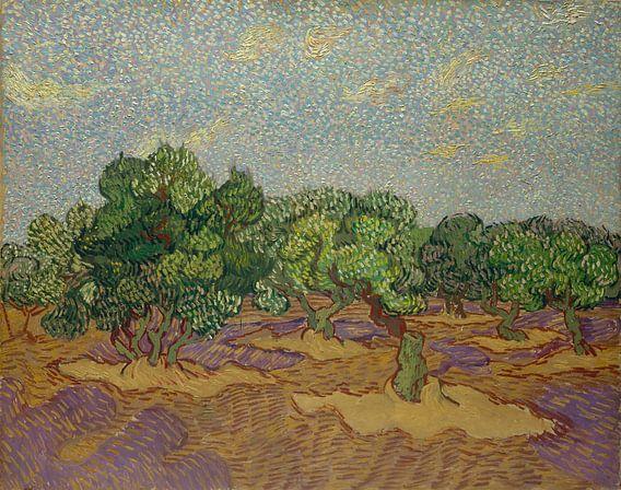 Olijfbomen, Vincent van Gogh van Meesterlijcke Meesters