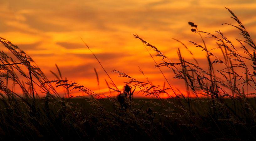 Zonsondergang bij Trintelen in Zuid-Limburg van John Kreukniet