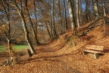 Herbst im berühmten Neandertal von Peter Eckert