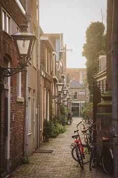 Koddesteeg Leiden van Dirk van Egmond