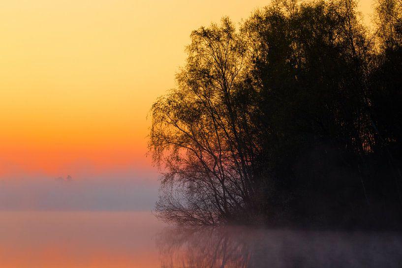 Foggy Sunrise 'Silhouettes' van William Mevissen