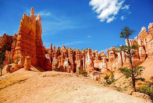 Hoodoos in Bryce Canyon