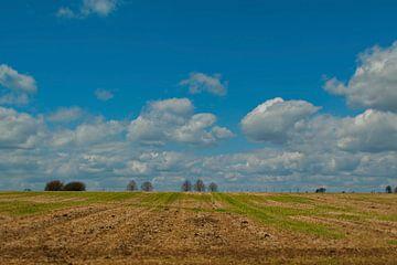 Perspectief op Limburgs heuvelland van Rick Biermans