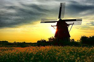 Zonsopgang bij Molen de Hommel Haarlem van