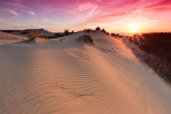 Prachtig avondrood bij zonsondergang in de duinen van Den Haag van Rob Kints