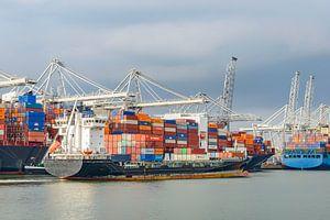 Container schepen in de haven van Rotterdam