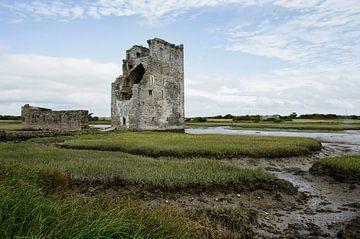 Ierland van Jan de Jong