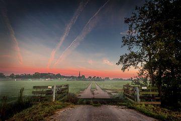 Morning mist von Johan Viele