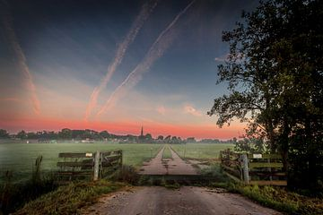 Morning mist sur Johan Viele