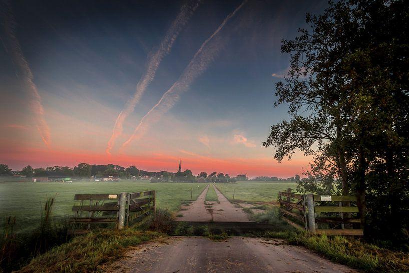 Morning mist van Johan Viele