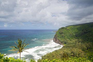 Pololu Valley, Big Island, Hawaii van Dirk Rüter