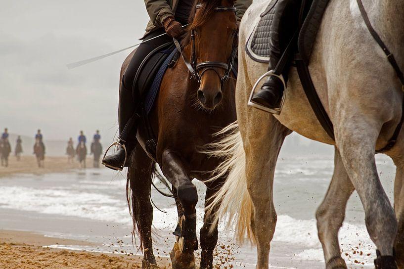 horses on the beach von Dirk van Egmond