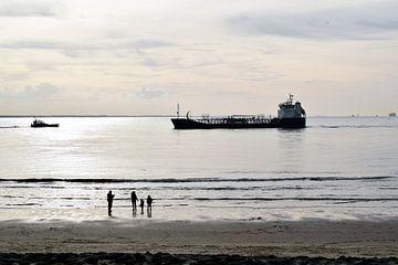 Loods op weg naar vrachtschip bij avondlicht in Vlissingen van