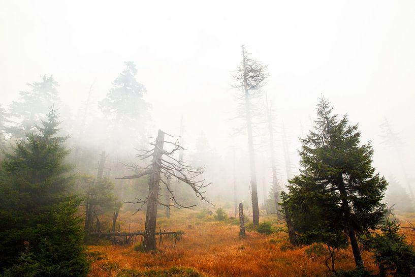 Brocken in de mist van Jan Sportel Photography