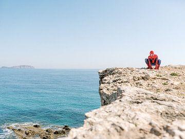 Spiderman - Superheld op de Rotsen - Film Poster van Youri Claessens