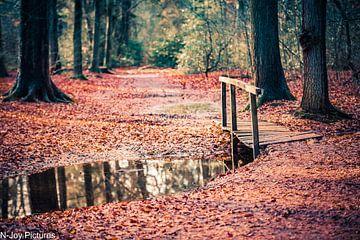 Landschaft Twente von N-Joy Pictures