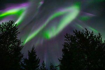 Noorderlicht gordijnen in Zweden van