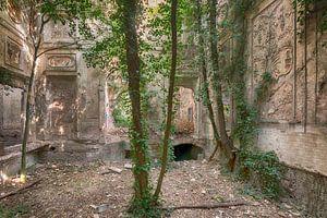 bomentuin in vervallen kasteel van dafne Op 't Eijnde