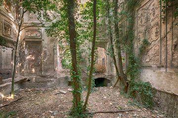 Arboretum in Burgruine von dafne Op 't Eijnde