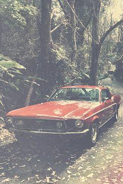 Ford Mustang van Wolbert Erich