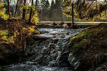 Natuur en landschap in het Erzgebergte van Johnny Flash