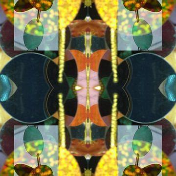 Kaleidoscope van Susan Stiletti