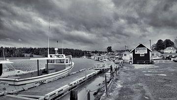 Rainy Day van Raimund Göppel