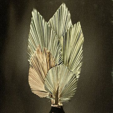 Stillleben getrocknete Palmblätter von Maurice Dawson