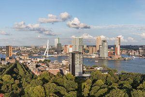 Het stadspark van Rotterdam vanaf de Euromast