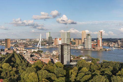 Het stadspark van Rotterdam vanaf de Euromast van